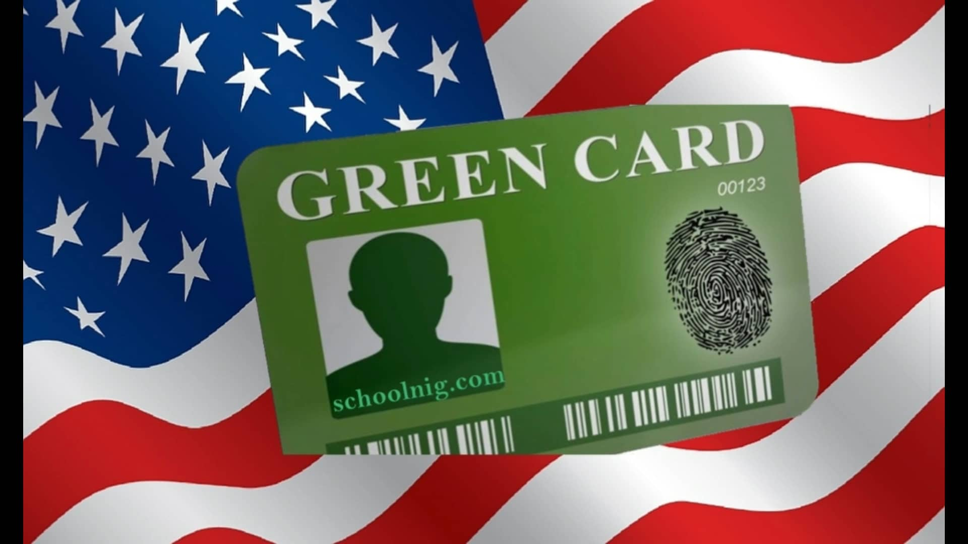 If it seems like your citizenship or green card is taking too long, here's how to check